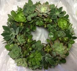 Create a lush succulent wreath. - Uploaded by Joan Martin Fee