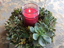 Create a succulent wreath for the holidays - Uploaded by Joan Martin Fee