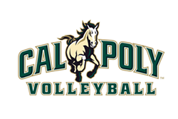 5a58e95f_volleyball_wordmark.png