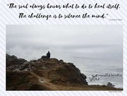 7a034f09_m_the_challenge_is_to_silence_the_mind.jpg