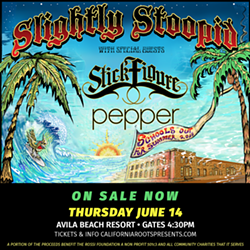 2971a914_crp18_slightlystoopid_ig2_preview.png