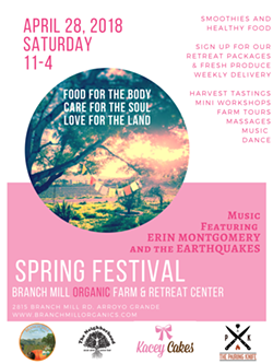 a92f5702_spring_festival.png