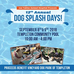Uploaded by Dog Splash Days VDP