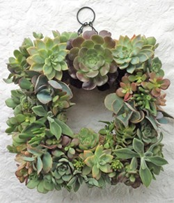 Make a succulent wreath - Uploaded by Joan Martin Fee