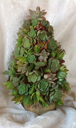 Create a holiday gift or centerpiece - Uploaded by Joan Martin Fee