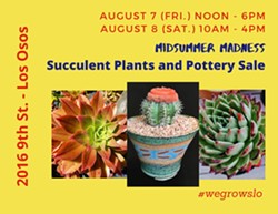 Hundreds of amazing plants and pots for sale! - Uploaded by westernartist
