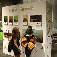 Summer Guide: Science Museum Oklahoma features new camps and exhibits to challenge young minds