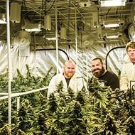 Legal harvest