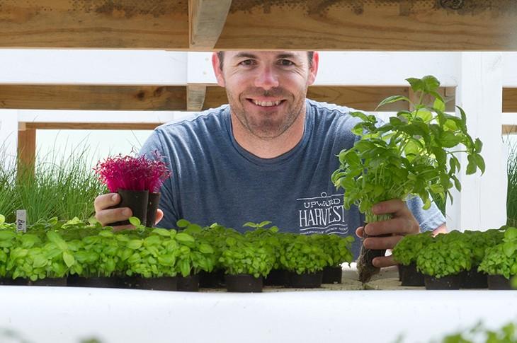 Travis Flatt of Upward Harvest glancing over the micro greens in his aquaponic garden. (Shannon Cornman)