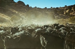 Lone-Mans-Land-still-PHOTO-BY-EZRA-GENTLE-2.jpg