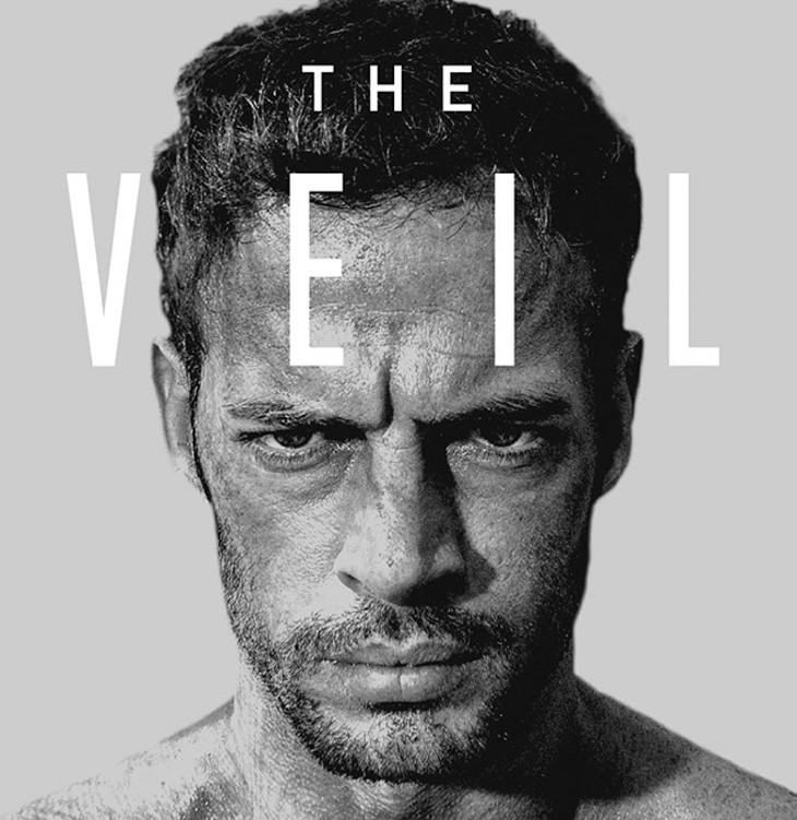 The Veil (Provided)