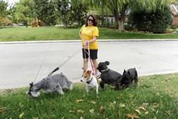 Cherokee Ballard walks her dogs in her neighborhood in Nichols Hills, Thursday, Oct. 22, 2015. - GARETT FISBECK