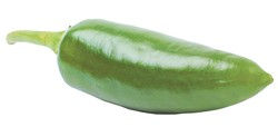 Green jalapeno pepper isolated over the white background - BIGSTOCK