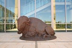 Harold Holden's resting buffalo sculpture at the Oklahoma History Center, Thursday, April 6, 2017. - GARETT FISBECK