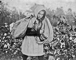 """Callie Campbell, 11 years old, picks 75 to 125 pounds of cotton a day, and totes 50 pounds of it when sack gets full. 'No, I don't like it very much,'"" photographer Lewis Hine wrote in his notebook. Photo taken Oct. 16, 1916, in Pottawatomie County. 