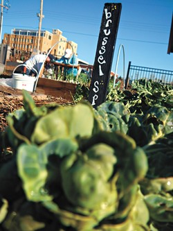 Volunteers work in Urban Neighbors' Midtown community garden at 417 W. Park Place. (Photo Urban Neighbors / provided)