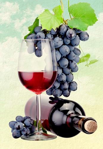 wine_tour_web.jpg