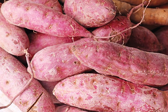 Fresh yams are available at Kafutoh African Food Mart. - PHOTO BIGSTOCK.COM