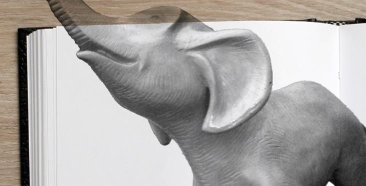 fiction_issue_-_elephant.jpg
