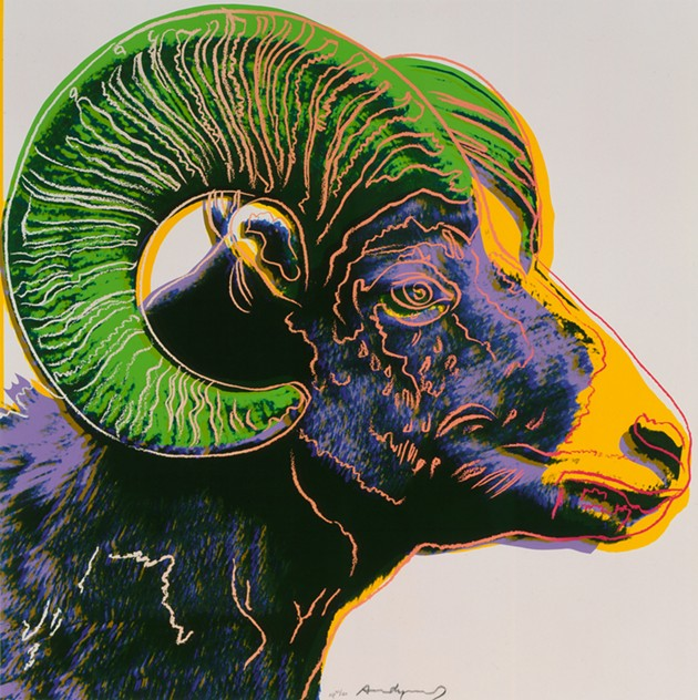 """""""Bighorn Ram"""" (1983) from Endangered Species by Andy Warhol - 1998.1. 2466.10 - THE ANDY WARHOL MUSEUM, PITTSBURGH; FOUNDING COLLECTION, CONTRIBUTION THE ANDY WARHOL FOUNDATION FOR THE VISUAL ARTS, INC. / NATIONAL COWBOY & WESTERN HERITAGE MUSEUM / PROVIDED"""