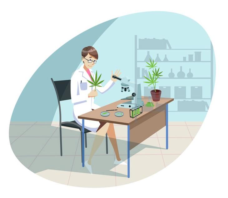 bigstock-marijuana-cannabis-medical-r-362300185-_converted_.jpg