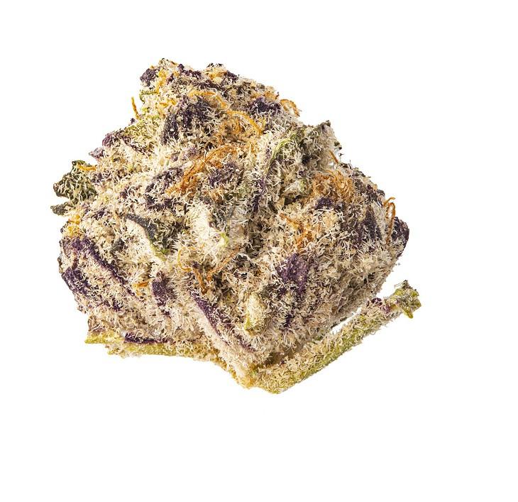 Purple Punch 2.0