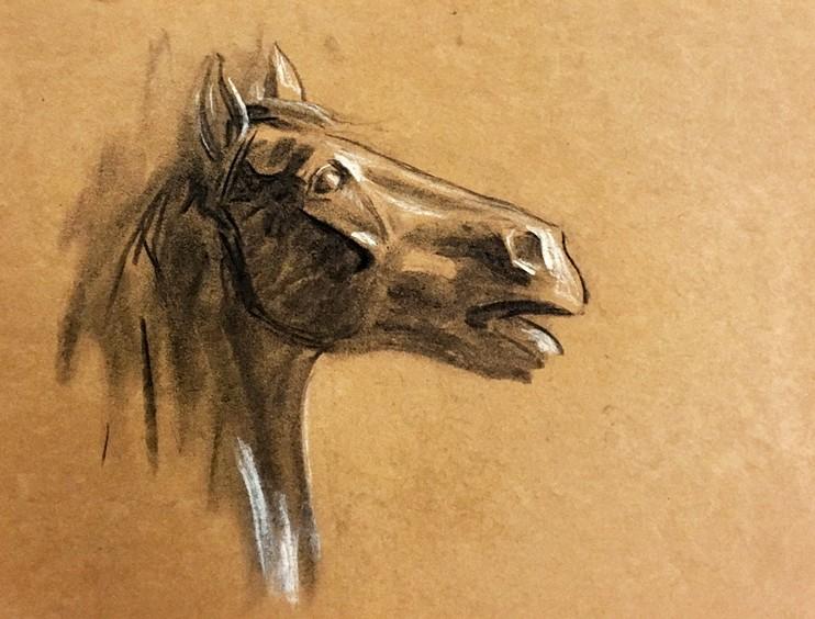 horse_85_wu.jpg