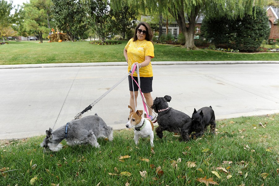 Cherokee Ballard walks her dogs in her neighborhood in Nichols Hills, Thursday, Oct. 22, 2015. - GARETT FISBECK