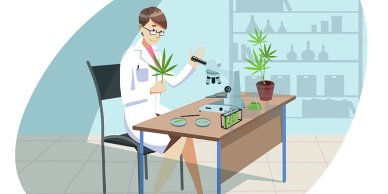 Cannabis testing still problematic