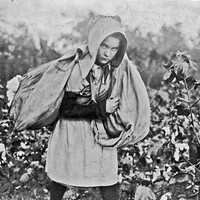 """""""Callie Campbell, 11 years old, picks 75 to 125 pounds of cotton a day, and totes 50 pounds of it when sack gets full. 'No, I don't like it very much,'"""" photographer Lewis Hine wrote in his notebook. Photo taken Oct. 16, 1916, in Pottawatomie County. 
