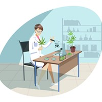 Cannabis testing still problematic