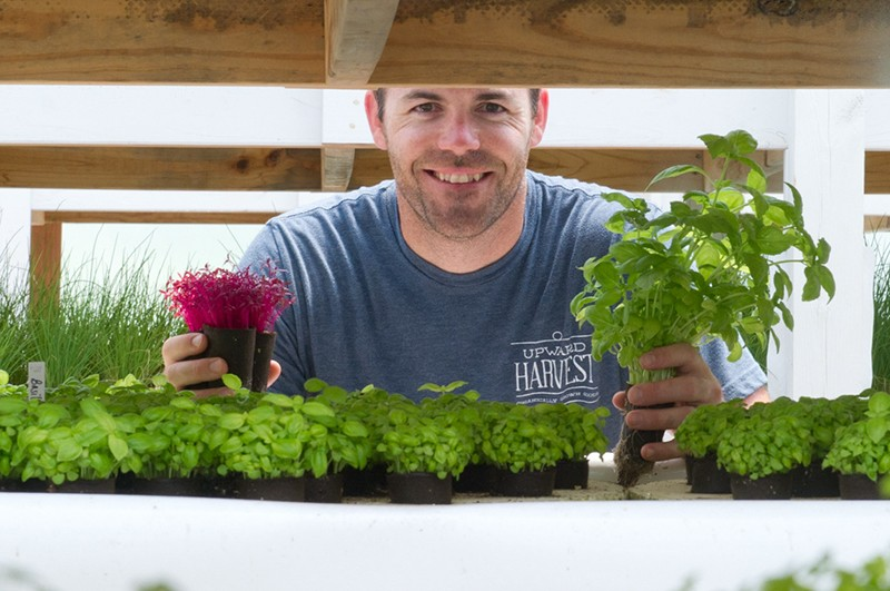 Travis Flatt of Upward Harvest glancing over the micro greens in his aquaponic garden. (Shannon Cornman)