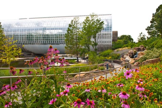 Myriad-Botanical-Gardens-148mh.jpg