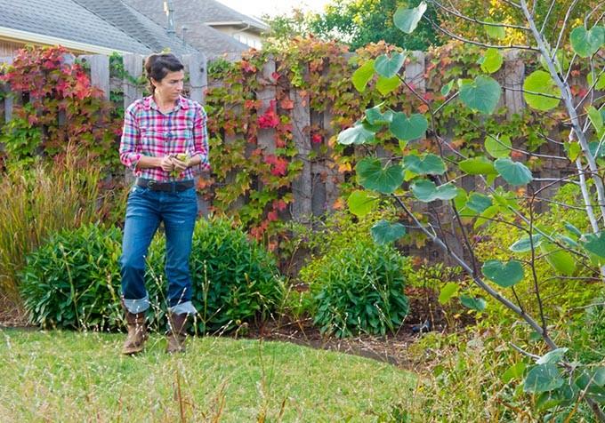 Jamie Csizmadia looks over the pocket prairie at Kim and Matthew Myers house in Edmond. (Shannon Cornman)