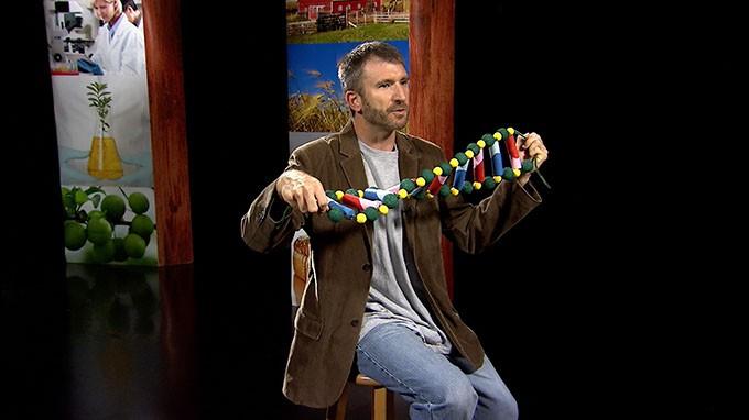 DNA-chain.jpg