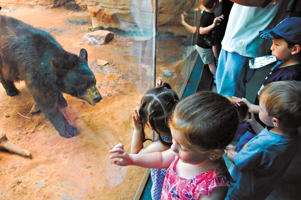 Kids can experience nature up close and personal at the OKC Zoo.Photo/Shannon Cornman - SHANNON CORNMAN