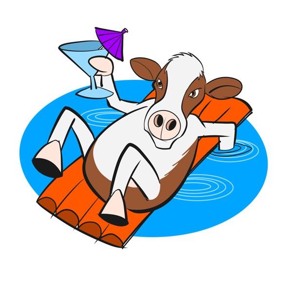 CowSwim.jpg