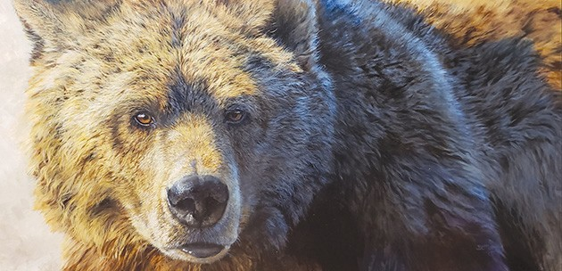 """""""Big Grizz"""" by Bonnie Marris - NATIONAL COWBOY & WESTERN HERITAGE MUSEUM / PROVIDED"""