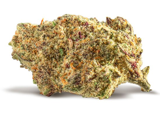 Purple Punch - PHILLIP DANNER