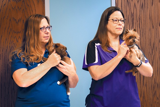Animal shelters across the state seek to become no-kill shelters by 2025. - MIGUEL RIOS