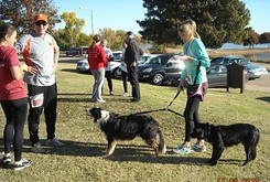 5K to combat pet overpopulation