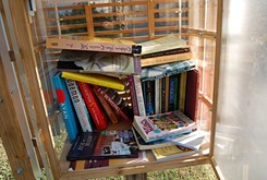 Little Free Libraries popping up around metro