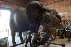 Norman foundry unveils a family of bronze elephants for 2nd Friday Norman Art Walk