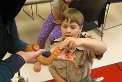 Sam Noble Museum provides opportunities for Oklahoma Scouts to earn badges