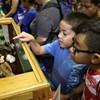 Cool Zoo Exotic Animal Exhibit @ OKC Fairgrounds