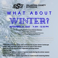 What About Winter? - Uploaded by ocesoklahomacounty@okstate.edu