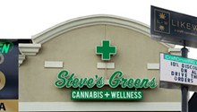 Cannabis Issue: Dense greenery
