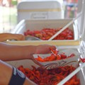 16th Annual Crawfish Festival moves to Heritage Square