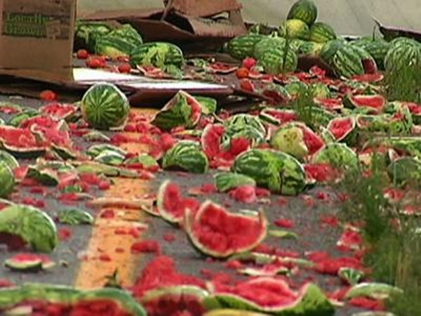 A common fate for good watermelons