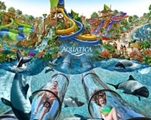 PHOTO COURTESY SEAWORLD ORLANDO - Aquatica